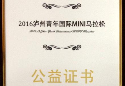 2016泸州青年国际MINI马拉松公益证书